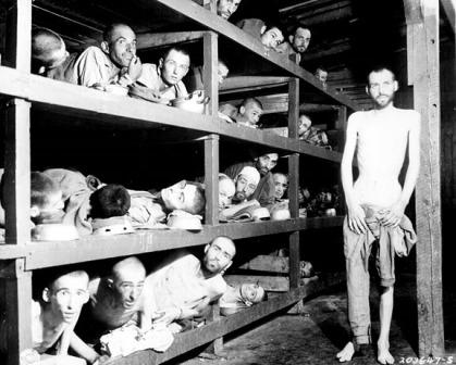 Novels, memory and the Holocaust