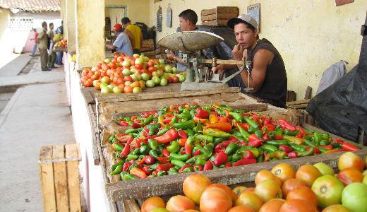 Senators confident on votes to lift Cuba travel ban