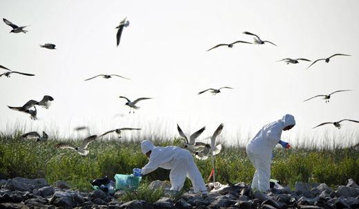 Cover-ups and 'cost-savings' ooze from BP records