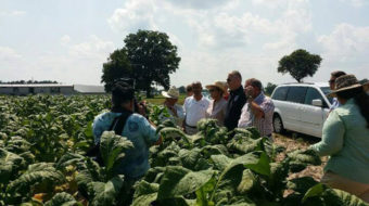British MPs cry when they tour North Carolina tobacco farm
