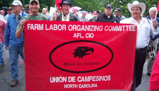 Farmworkers fight for rights in the tobacco fields
