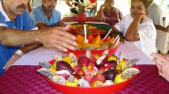 Cuban food production is up