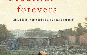 """""""Behind the Beautiful Forevers"""" is a powerful indictment of capitalism"""