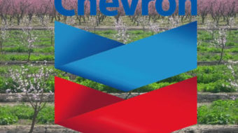Chevron's oil on troubled waters