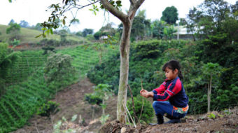 Coffee Brigade will harvest peace, justice and coffee in Colombia