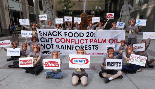 Climate march underscores the high stakes of using palm oil