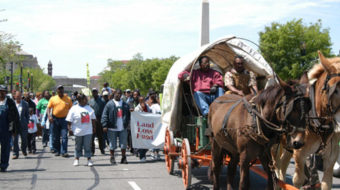"Black farmers settlement is ""win for all family farmers"""