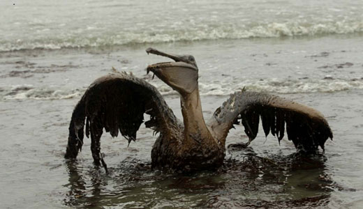 Major oil-water spill darkens Alberta, Canada