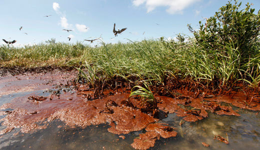 Gulf still reeling from effects of BP oil spill
