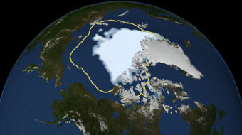 Cold spring linked with melting sea ice