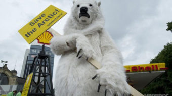 Top ten environmental wins of 2012