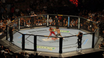 What do casinos and martial arts have in common?