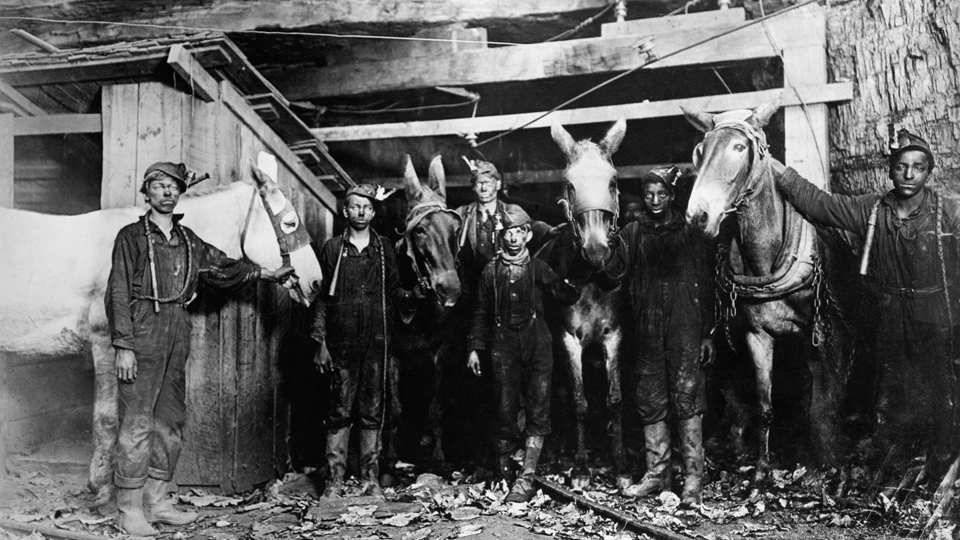 An apple for Hannah: A Christmas story from the coal fields