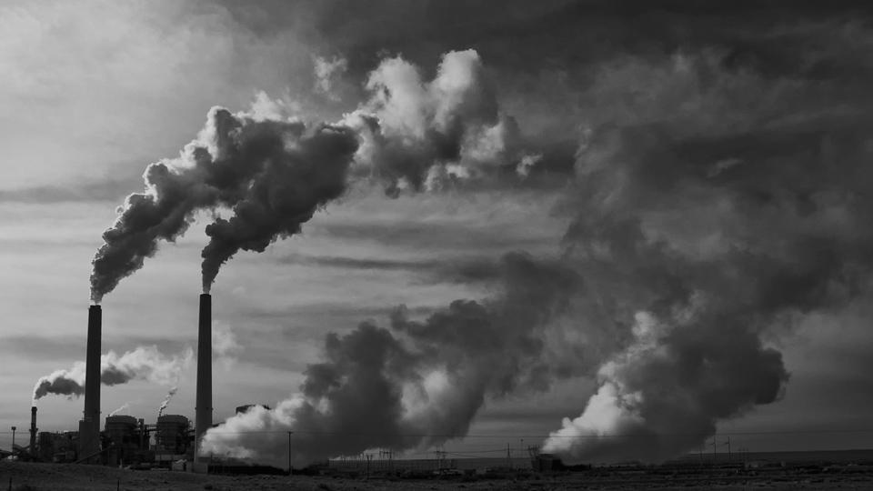 "Coal executive's ""action plan"" finds success under Trump"