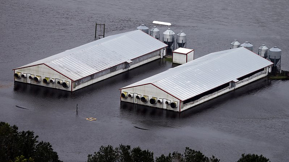 Swollen NC rivers swamp dumps, raising water pollution fears