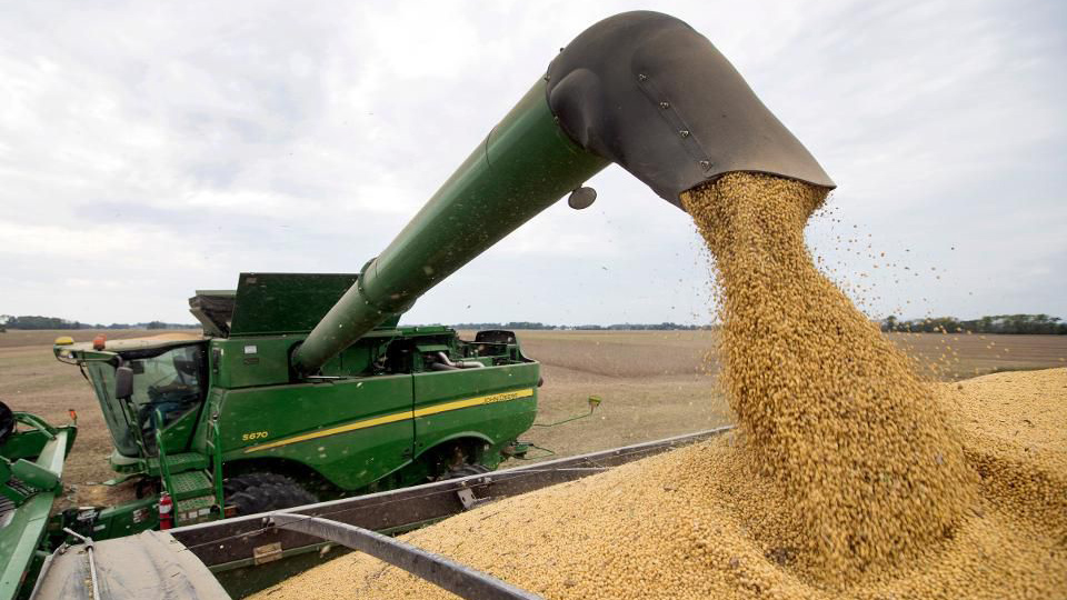 What the government shutdown means for farmers