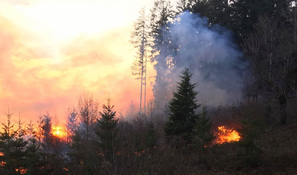 Early season wildfire threatens homes, buildings in Oregon