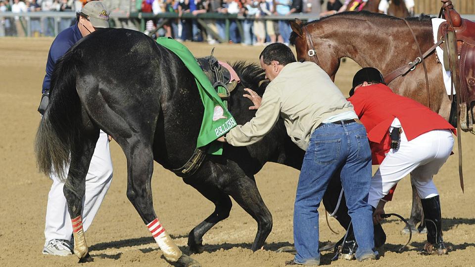 Santa Anita horse deaths overshadow reforms made elsewhere