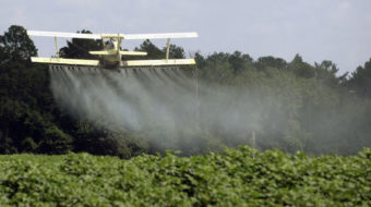 States sue Trump EPA to stop its OK of toxic pesticide