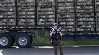 Poultry towns devastated as workers and students disappear after ICE raids
