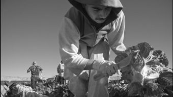"Farmworkers are ""essential"" but excluded, awaiting the virus"
