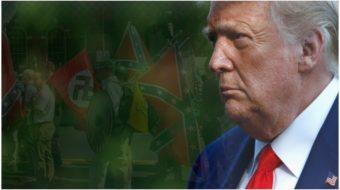 Trump turns to neo-Nazi symbols to attract racist votes