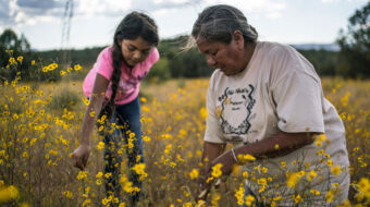 'Gather': Despite America's history of violence, Indigenous food sovereignty carries on