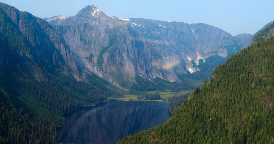 Biden will restore Tongass National Forest protections in critical step for climate