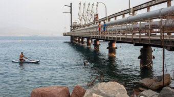 Secretive Israel-UAE oil deal endangers prized Eilat corals