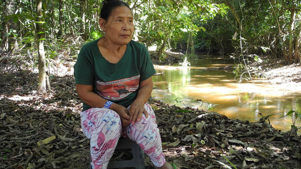 Fate of the Piripkura tribe in hands of agency controlled by Bolsonaro