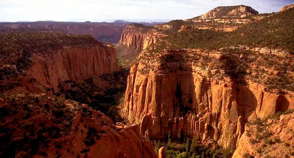 Biden restores protections to three national monuments cut by Trump