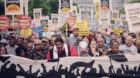 Poor People's Campaign hearse spotlights death of voting rights